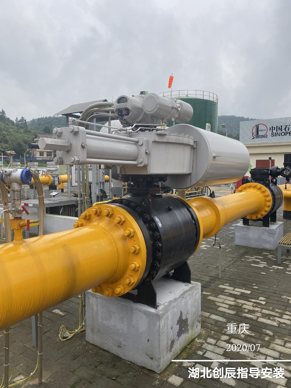 中石化重庆分公司分输站电液执行